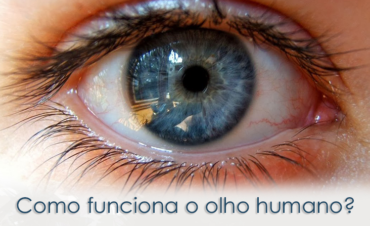 Como funciona o olho humano